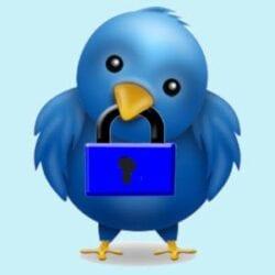 ver perfil privado en Twitter